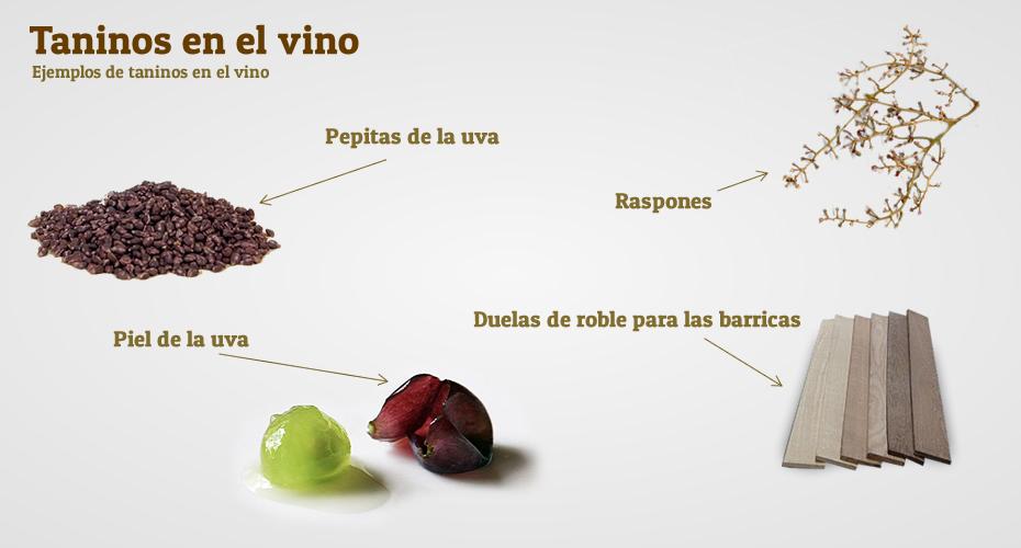 Qué son los taninos del vino