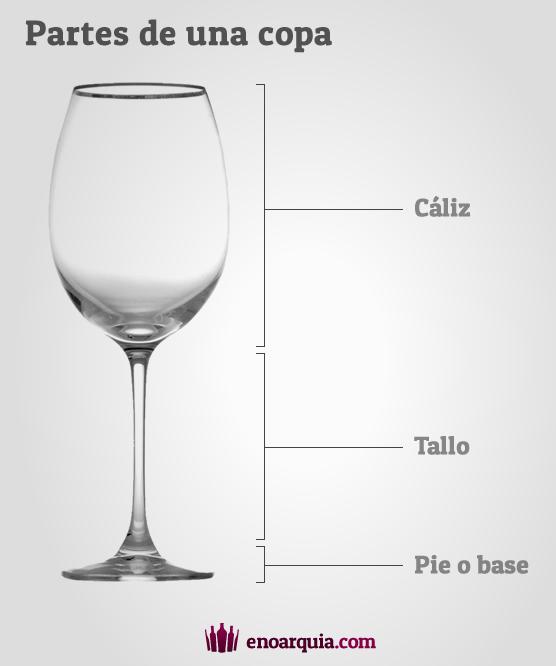 Partes de una copa de vino