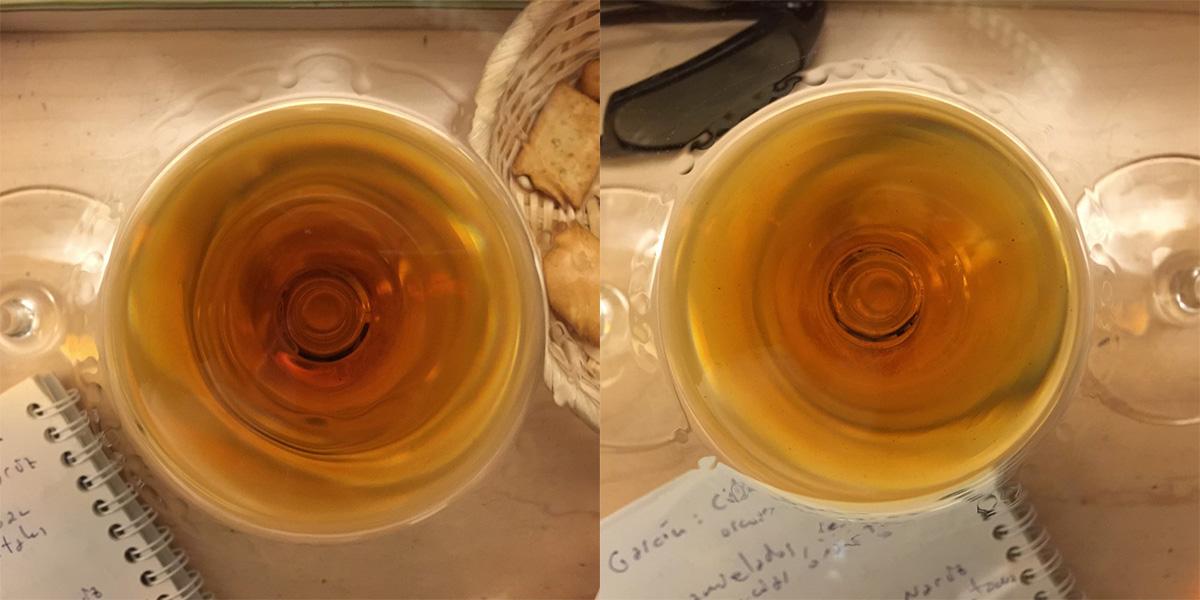 Izquierda - Color en la copa del Palo Cortado Viejísimo Bota Punta nº 48  – La Bota de… Derecha - Color en copa del Palo Cortado Colección Roberto Amillo  VORS – Espíritus de Jerez (4)