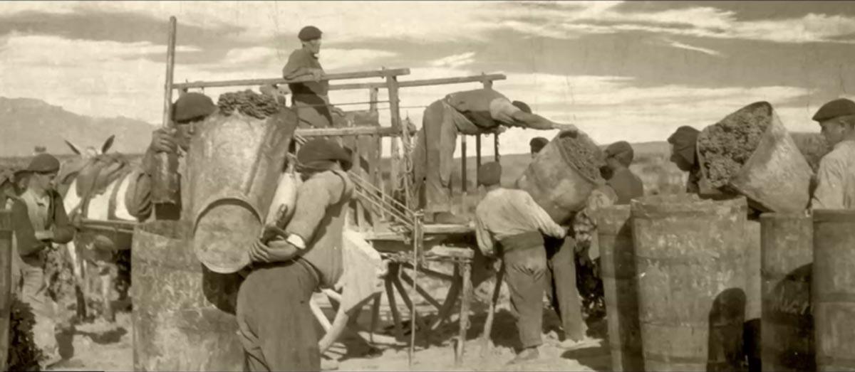 Imagen en color sepia de un grupo de personas realizando tareas de vendimia.